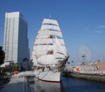 現在の帆船日本丸(総帆展帆)-2